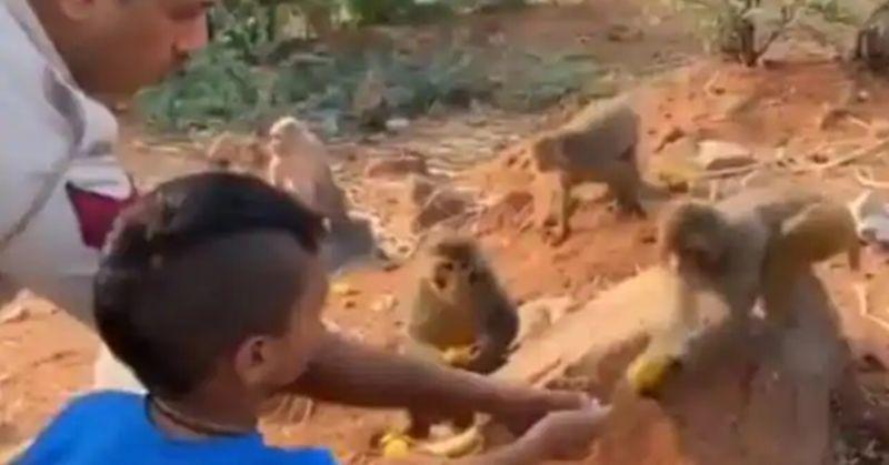 Shikhar Dhawan son giving fruits to animal is super adorable